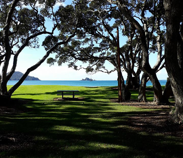 Oakura Bay Reserve, Northland, New Zealand