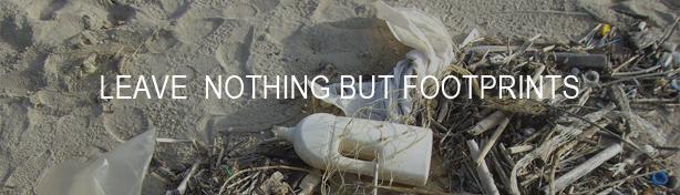 Oakura Bay - leave nothing but footprints